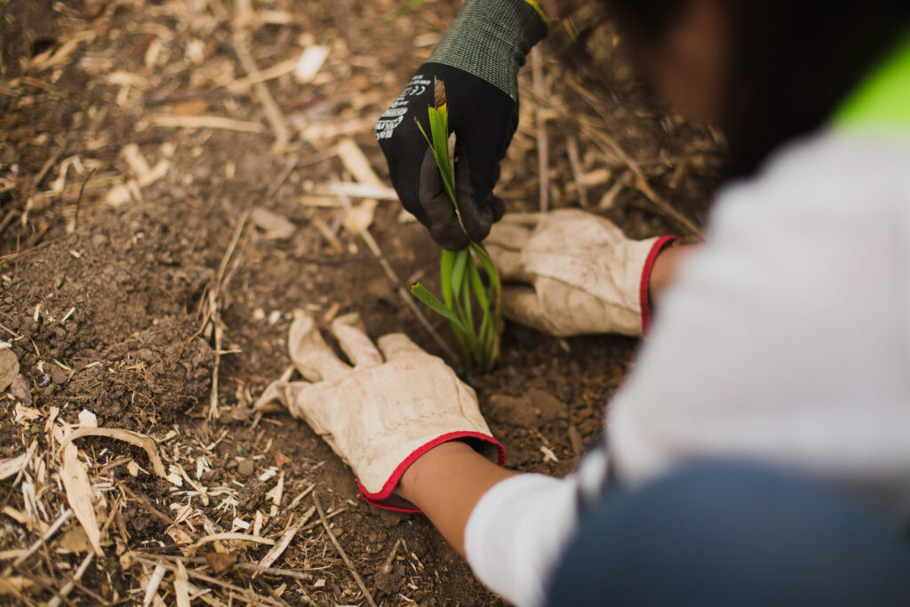 CVA has developed Corporate Partnerships for almost 40 years to deliver environmental action