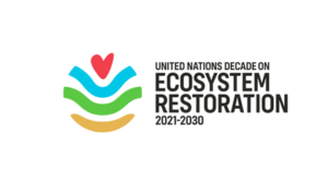 The CVA Corporate Challenge Series launched in response to the UN Decade on Ecosystem Restoration