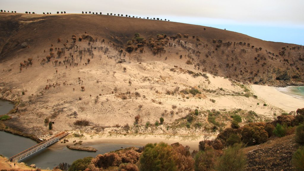 Kangaroo Island after Black Summer Fires - Image by Stephen Mitchell