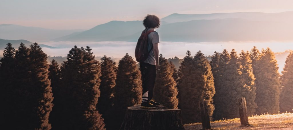 Man looks out over forest