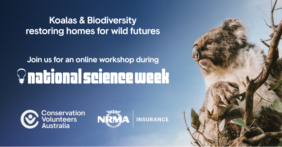 Banner image for online workshop about biodiversity during national science week