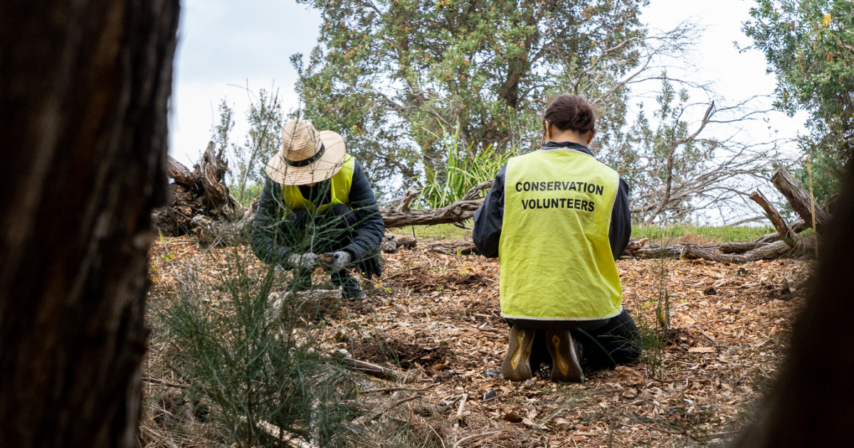 Nature and Human Wellbeing - Stewardship in Action